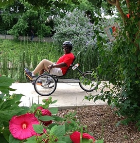 Guest pedaling past flowers